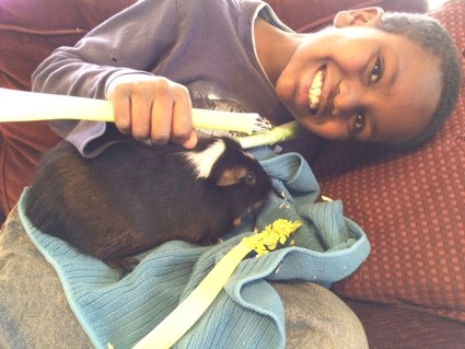 After school snack with our therapy guinea pig.