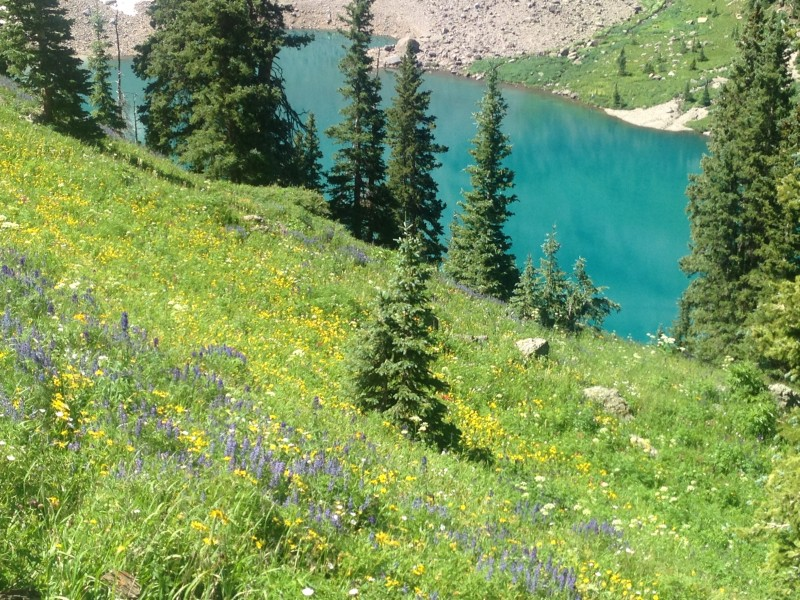 wandering above Blue Lakes in San Miguel County, Colorado