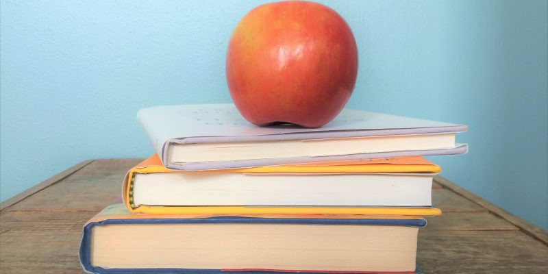 How to Survive When Grief is Your Teacher